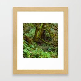 Autumn Greens Framed Art Print