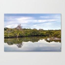 Wrights Creek Canvas Print