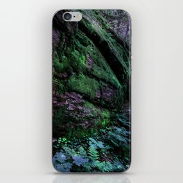 Enchanted Forest Wall (Where the Fairies Dwell) iPhone Skin