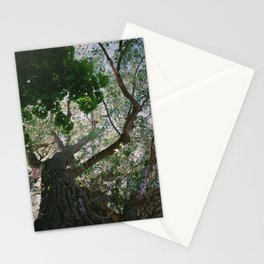 Consistant growth Stationery Cards