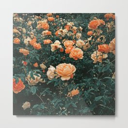 Forest of Roses Metal Print