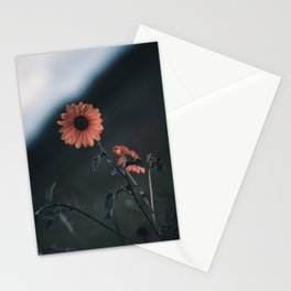 Bloom where you are Planted - LG Stationery Cards