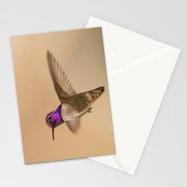 Costa's Hummingbird (Calypte costae) Stationery Cards