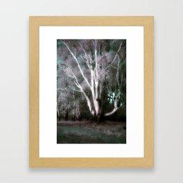The Old Man of the Forest (False Colour) Framed Art Print