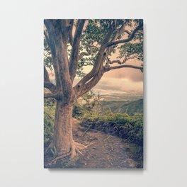 Waihee Ridge Trail Maui Hawaii Metal Print
