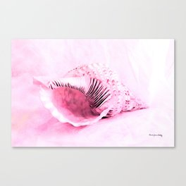 Conch of Pink Canvas Print
