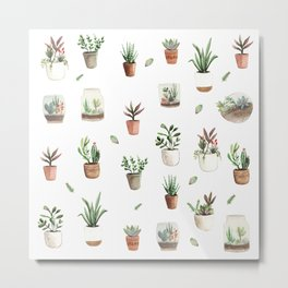 Succulent and Cacti pots and terraniums Metal Print