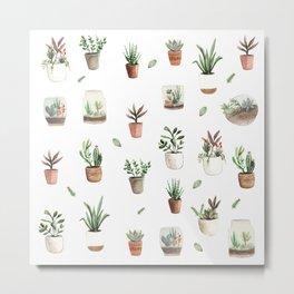 Succulent and Cacti pots and terraniums Metal Print
