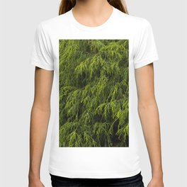 Evergreen Shrub T-shirt
