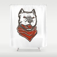pitbull Shower Curtains featuring Pitbull by VentureDesign