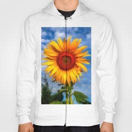 Blooming Sunflower  Hoody