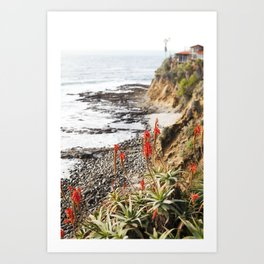Laguna Beach being Beautiful Art Print