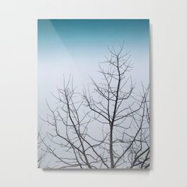 Branches of Winter Metal Print