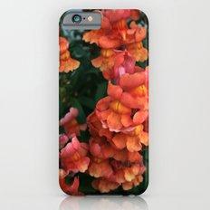 Snap, crackle & pop... Slim Case iPhone 6s