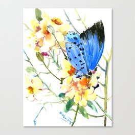 Holly Blue Butterfly and Yellow Flowers Canvas Print