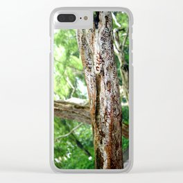 Friendship is Freedom - Singapure Clear iPhone Case