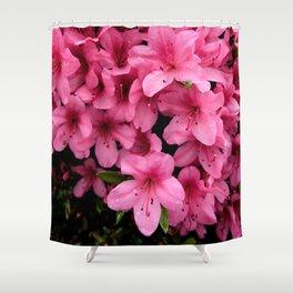 Asiatic Azaleas Shower Curtain