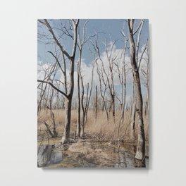 Marsh Metal Print