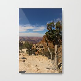 The Miracle Of Nature Metal Print
