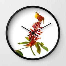 Great Carolina Wren Wall Clock