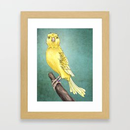 Waterslager Canary Framed Art Print