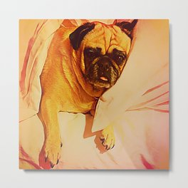 PUG LOVE: Will you bring me breakfast in bed? Metal Print