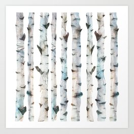 Birch tree Pattern Art Print