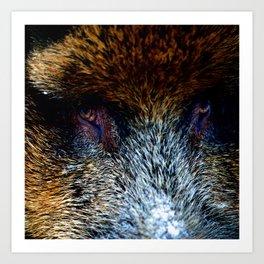 The North | Wild Boar Art Print