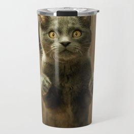 Cat, Cats, Cat Love - Super Cute Cat Travel Mug