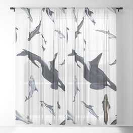 Dolphins all around Sheer Curtain