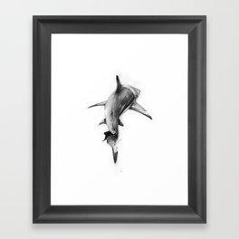 Shark II Framed Art Print