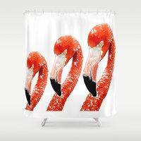 flamingo Shower Curtains featuring Flamingo by Regan's World