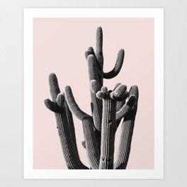 Cactus group Art Print