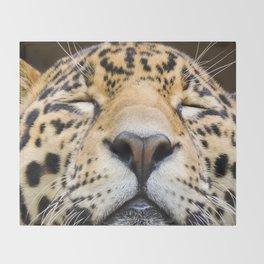 Sleeping Jaguar Throw Blanket
