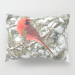 Cardinal on a Snowy Cedar Branch (sq) Pillow Sham