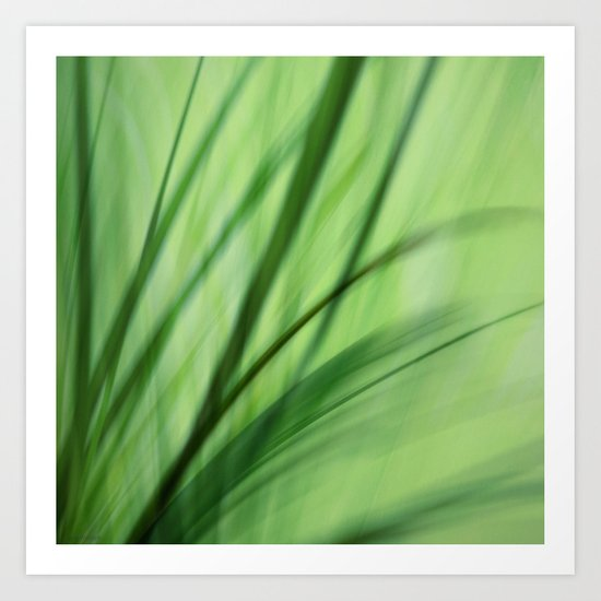 Windblown Art Print