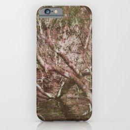 Wetland Trees (colour) iPhone Case