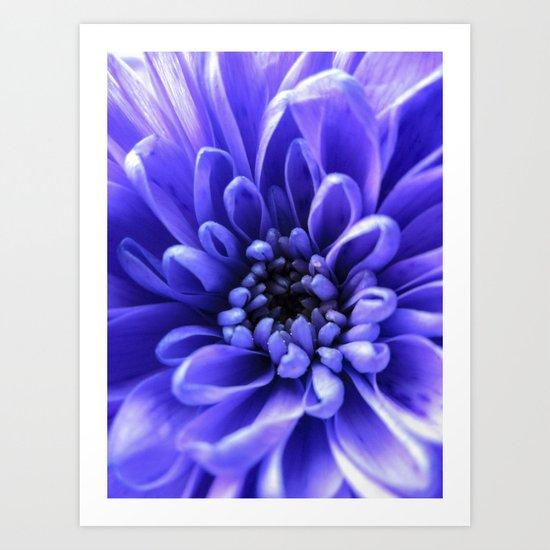 Macro Blue Art Print