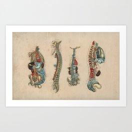 Human Internal Anatomy 1841 Print Art Print