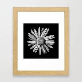 Dinged - BW Framed Art Print