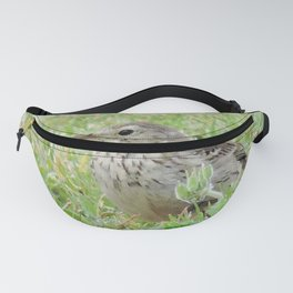 Pipit on the Lawn Fanny Pack