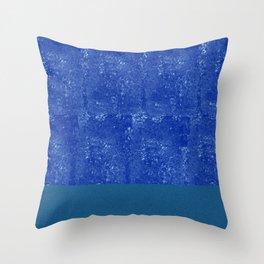 Nil Patabhumi Throw Pillow