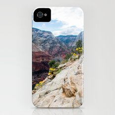 Zion National Park Wildflowers iPhone (4, 4s) Slim Case