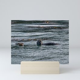 A Light Snack (Point Lobos) Mini Art Print
