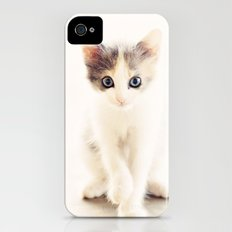 White and Grey Kitten iPhone (4, 4s) Slim Case
