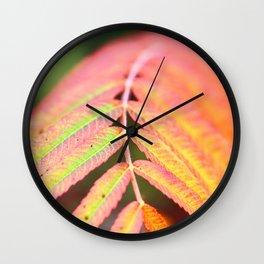 Sumac leaf colors in autumn Wall Clock