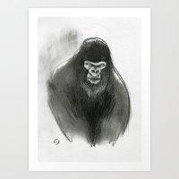Gorilla gorilla Art Print