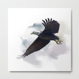 american bald eagle in flight ,watercolor painting Metal Print