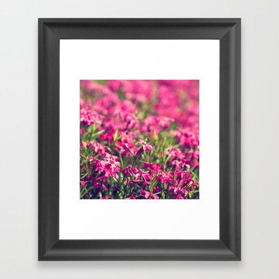 Through the Pink Framed Art Print