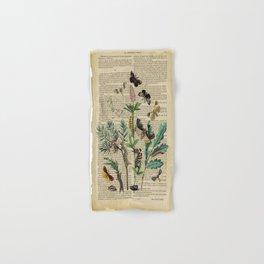 Book Art Caterpillar, Moths & Butterflies Hand & Bath Towel